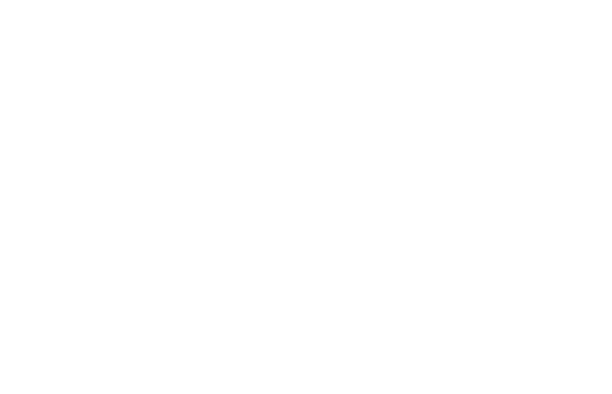 Susan B. Meister Child Health Evaluation and Research Center logo
